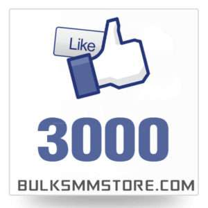 Real 3000 Facebook Page Likes